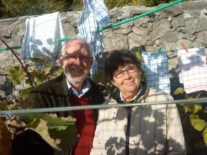 Winzerin und Winzer auf dem Pillnitzer Weinberg