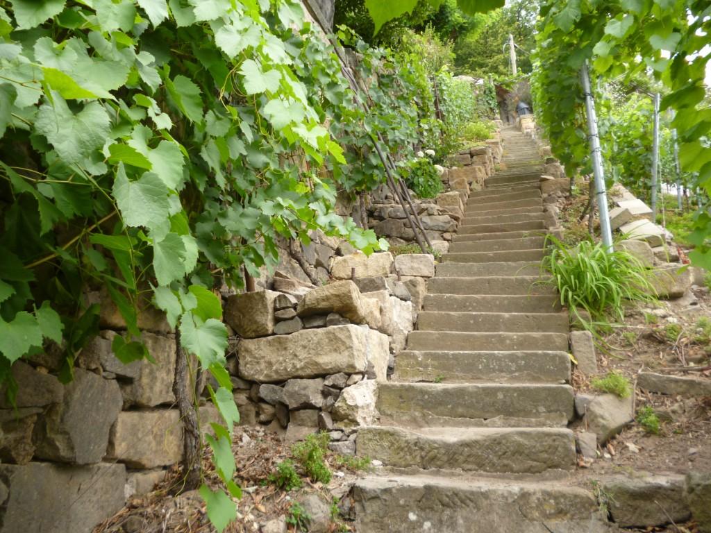Foto_Treppe_Juli15_von unten nach oben