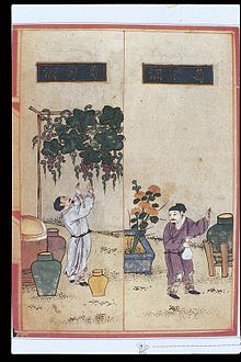 Chinese_Materia_Dietetica,_Ming;_Alcoholic_beverages_Wellcome_L0039397